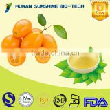 100% Natural Freeze Dried Kumquat Concentrate Juice Powder- No pigment No addtives