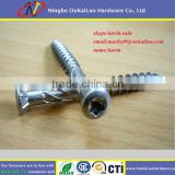 Coarse double thread cutting screw