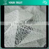 Alibaba Innovation 55Gram 15% Silver Metallic 85% Nylon Woven Mesh Fabric Swiss Lace