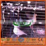 Factory Supply High Quality Pigeon Breeding Cage