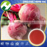 Beet red color powder 99% | sugar beet pigment red E 100