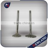Intake & Exhaust Engine Valves for Nissan Patrol TB48 Valve                                                                         Quality Choice