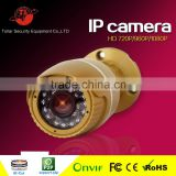 720P dome HD Network IP surveillance ip ir camera , onvif p2p ip camera