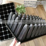 Inquiry about New Design 45 Cell and 140mm Deep PS Plastic Seed Planting Nursery Germination Tray for Forest propagation