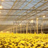 Good quality multi span polycarbonate flower greenhouse with shading system and growing lighting system