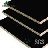 Wood Film Face Plywood Building Shuttering Looking for Distributor