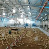 design chicken farm shed controlled poultry equipment for broiler