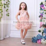 Formal appliqued flowers Princess Flower Girl Dresses For Wedding Easter Party Infant Toddler Baby Christening Pageant dress