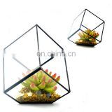 geometric terrarium geometric glass terrarium wholesale