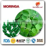 1000mg moringa leaf seed powder essence softgel tablet supplement pill