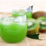 Exported Quality Fresh Green Kiwi Fruit Chinese Gooseberry