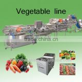 stainless steel vegetable washing machine/equipment/plant/frozen fruit and vegetable processling line