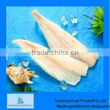 frozen hake fish fillet more competitive supplier