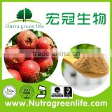 free sample for test HACCP KOF-K GMP FDA certified Changsha Hunan China company top quality hawthorn extract