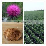 KONO wholesale Plant Extract Silymarin / Silybinin / Milk Thistle Extract with best price