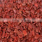 2016 high quality red hybrid water melon seeds