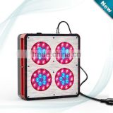 Apollo 4 LED Grow Light