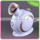 Beauty face steaming device F828-2 (Gold)
