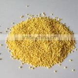 Hulled broomcron millet with good quality