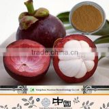Supply Top Quality 100% Natural Mangosteen Extract Mangosteen Juice Powder Alpha-Mangostin Polyphenols