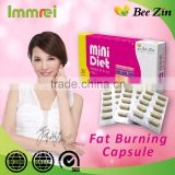 Bee Zin Weight Loss Diet Supplement Fast Fat Burning Capsule