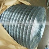 hot dipped galvanized welded wire mesh welded wire mesh machine in rollwelded wire mesh dog cage