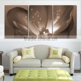 Custom printing 3d lenticular home decoration photo