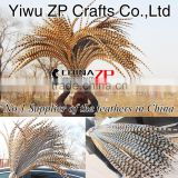 No.1 Manufactor ZPDECOR Best Selling Cheap Large Natural 110-120cm Length Super Long Reeves Venery Pheasant Tail Feathers
