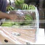 LDPE Bags For Banana exported to Bolivia market