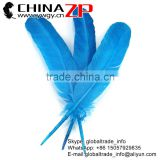 ZPDECOR Wholesale Best Selling Feather Size from 30cm-35cm Dyed Turquoise Blue Solid Color Turkey Wing Feathers