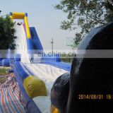 Top design giant commercial inflatable slides for sale WS070