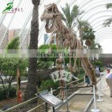 Garden decorative dinosaur skeleton