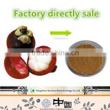 GMP factory supply competitive price Mangosteen Extract Alpha-mangostin herbal antiviral