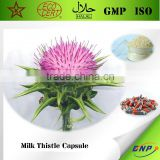 Top Sell High Quality Milk Thistle Capsule