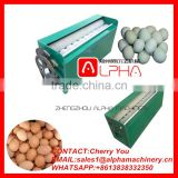 Brush type egg cleaning machine /duck egg washing machine/goose egg washing machine