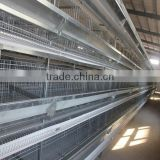 H type automatic poultry farm broiler cage
