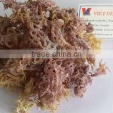DRIED EUCHEUMA COTTONII USED FOR EXTRACT AGAR AGAR POWDER WITH GOOD AT QUALITY