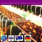 Burning resistant & high temperature resistant steel mesh conveyor belt with best price