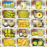 All Canned Pineapple, Pineapple Slides; Mini Slides; Chucks; Pieces; Tidbits (With 1/16 cuts)...