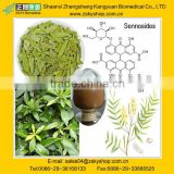 Plant Extract Senna Leaf Extract/ Senna Leaf Extract 4%-8%/ Senna Leaf Extract 6%,8%,20% sennoside A+B