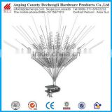stainless steel Bird Thorn/Metal Anti Bird Thorn, Bird Spike for sale