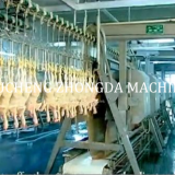 CHICKEN SLAUGHTER AND ABATTOIR MACHINE