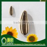 Hot Sell Bulk White Sunflower Seeds/Sunflower Seeds Supplier/china sunflower seeds