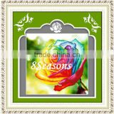 Handmade Multicolor Flower Pattern Embroidery Diamond Painting DIY Kit Cross Stitch For Living Room