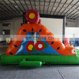 2017 Crazy caterpillar commercial grade inflatable dry slide for kids for sale