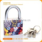 Professional New Heavy Duty Scrawl Flower painted Atomic key Pattern Printing Safety iron padlock