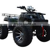 3000W Electric Buggy Four Wheel Bike for Adults