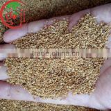 Factory Supply High Quality Goji Berry seeds for plants tree