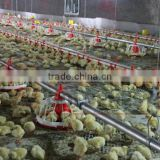 Goldenest wholesale pan feeder for boiler farm equipment used in poultry farming equipment chicken house JCJ01-OP05