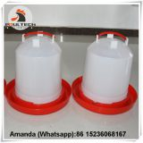 Namibia Wholesale Poultry Farming Plastic Chicken Drinker & Chicken Waterer & Day Old Chicks Drinker & Baby Chick Drinker for Chicken Floor Raising System
